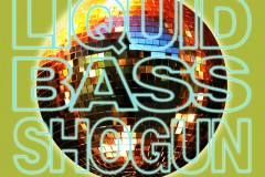 Dj DropD Liquid Bass Shogun