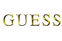GOLD-GUESS-LOGO