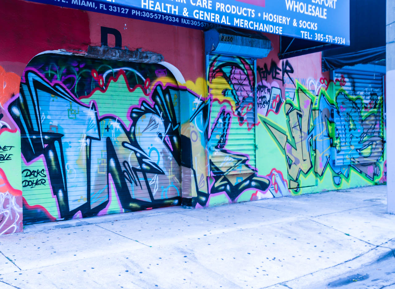 wynwood-doors-part-2-wordintown-jay-romero-photography-2015-1-6