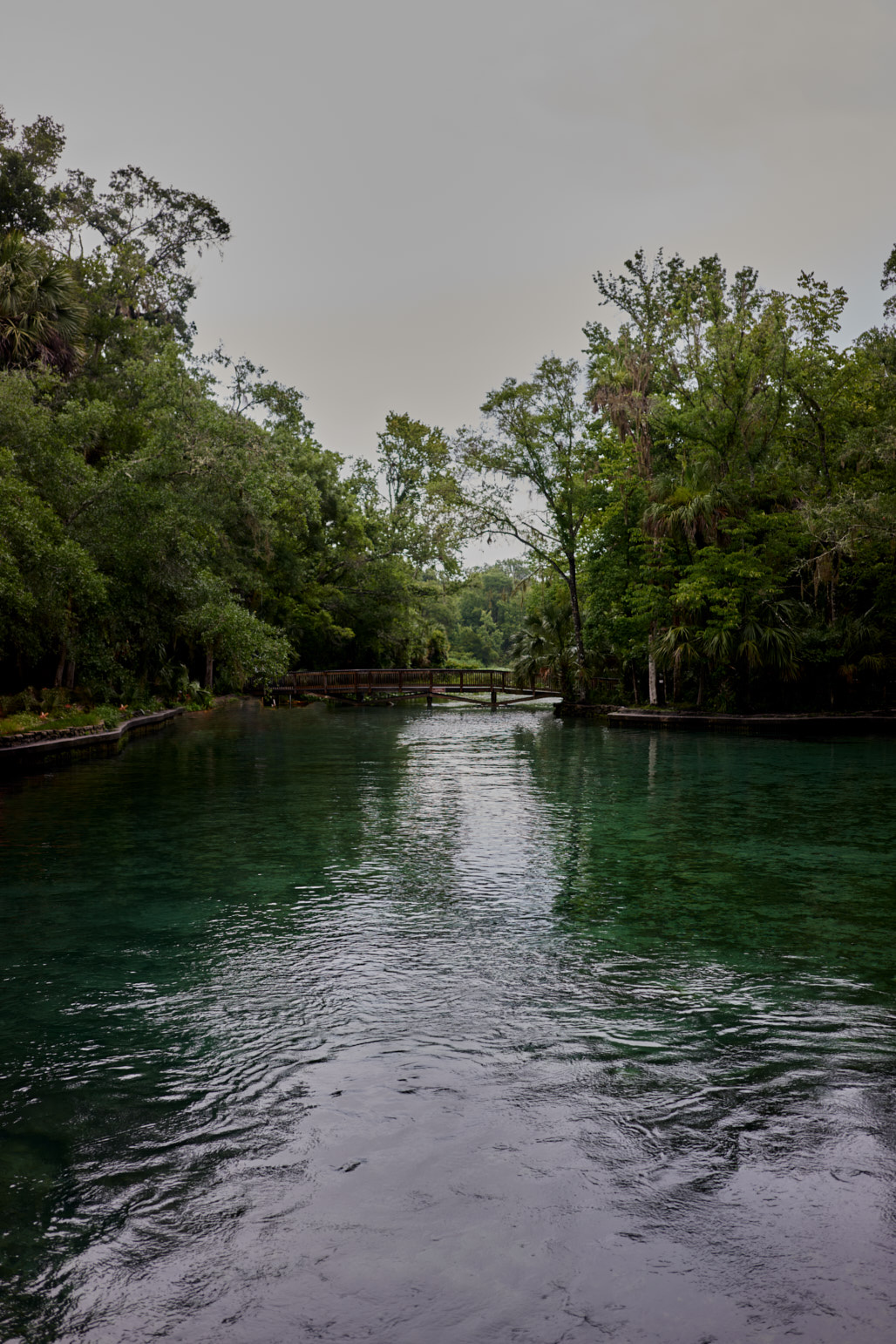 wekiva_springs_florida_jose_romero_photography_wordintown_DSC08112